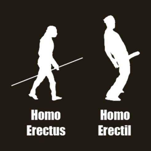 Homo Erectil
